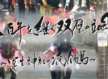 2015年12月テレビ神奈川「ダイドードリンコスペシャル八百年を継ぐ双璧の颯~室生神社の流鏑馬~」揮毫